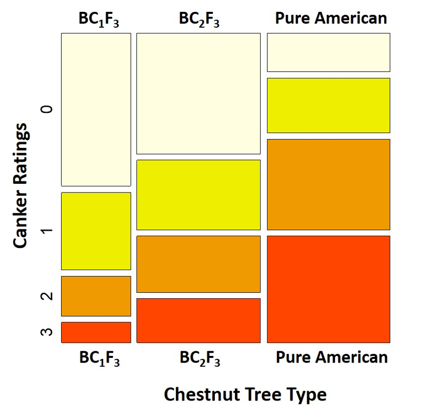 sample infographic on chestnut tree canker in red, orange, and yellow